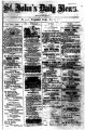 St. John's Daily News, 1865-06-25