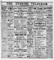 Evening Telegram (St. John's, N.L.), 1899-03-22