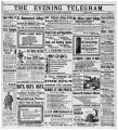 Evening Telegram (St. John's, N.L.), 1899-08-29