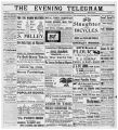 Evening Telegram (St. John's, N.L.), 1900-06-20