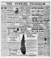 Evening Telegram (St. John's, N.L.), 1901-05-25