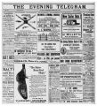 Evening Telegram (St. John's, N.L.), 1901-06-08