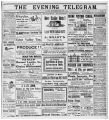 Evening Telegram (St. John's, N.L.), 1901-06-21