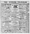 Evening Telegram (St. John's, N.L.), 1901-06-25