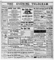 Evening Telegram (St. John's, N.L.), 1901-06-28