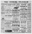 Evening Telegram (St. John's, N.L.), 1903-08-01