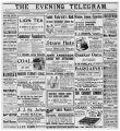 Evening Telegram (St. John's, N.L.), 1903-08-19